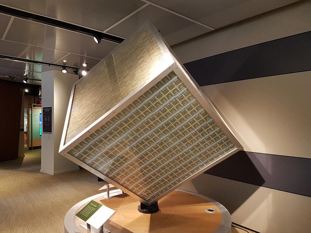 В этом кубе один миллион банкнотами в один доллар
