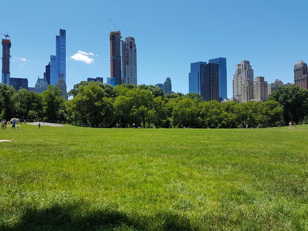 Нью-Йорк тоже растёт
