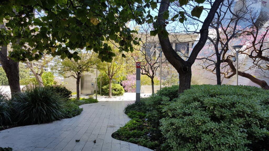 Парк на крыше Концертного зала имени Уолта Диснея